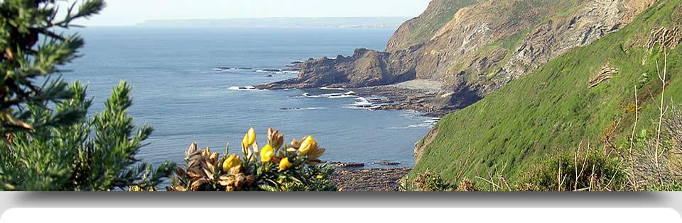 view-from-cliffs-jpg